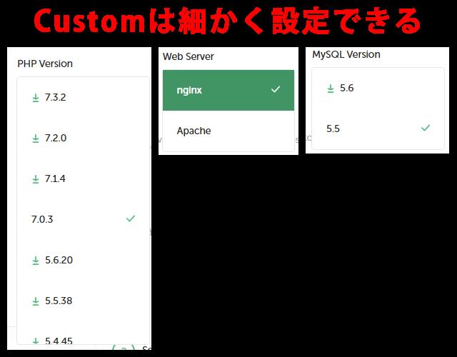 Customを選択すると詳細に設定できる